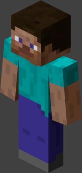 Steve Player