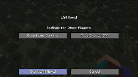 Starting LAN World