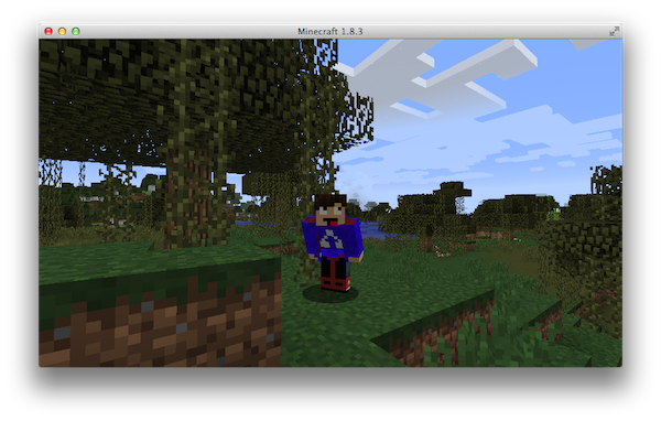 Check out your new skin in Minecraft in-game